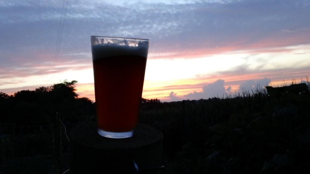 Drunken Lemur beer at sunset